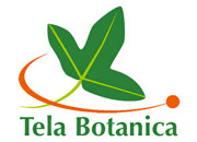 Tele Botanica